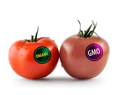 genmodifierad mat nackdelar